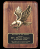 Click this Image to visit the Eagle Awards category.